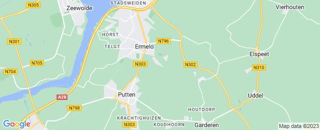 Houten Zwijn