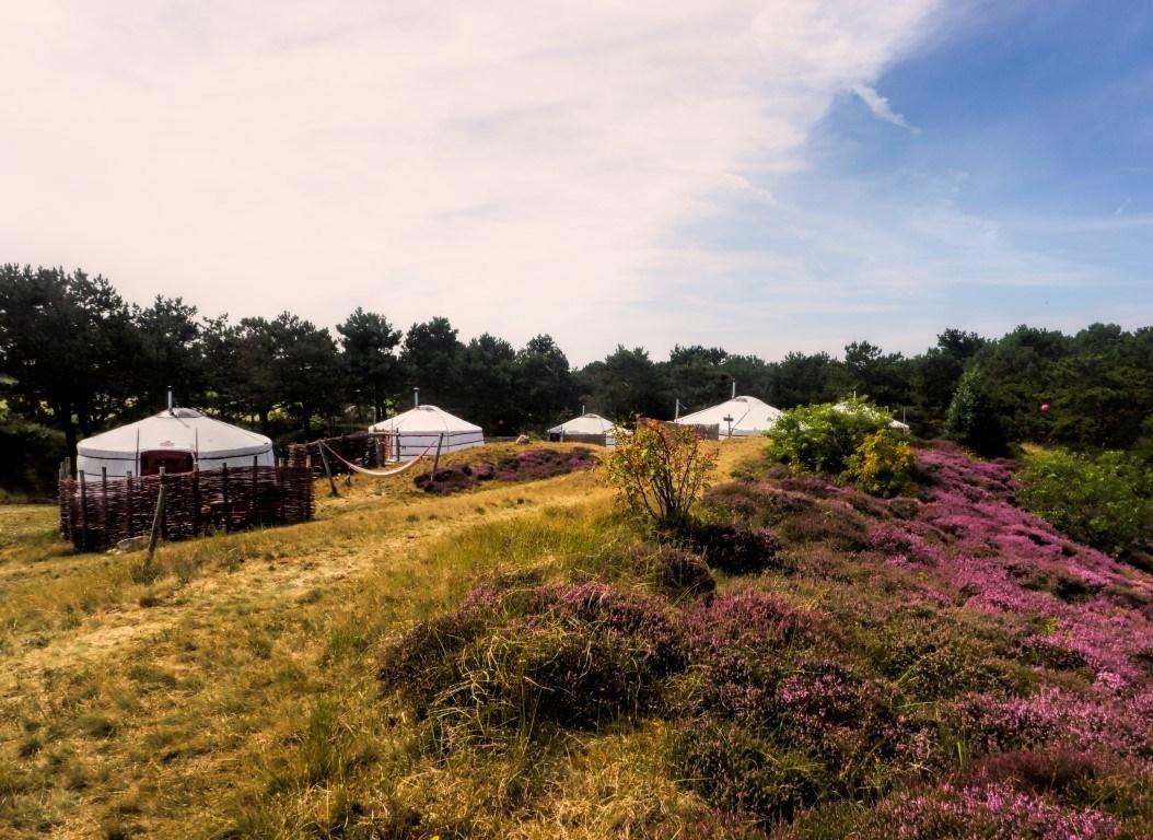 yurts - texel - nederland - glamping